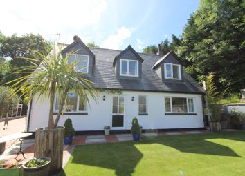 Thumbnail 4 bed detached house for sale in High Street, Blackwood, Blackwood