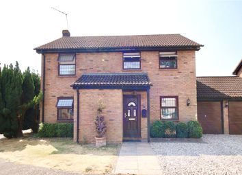 Thumbnail 4 bed property to rent in Hoynors, Danbury, Chelmsford