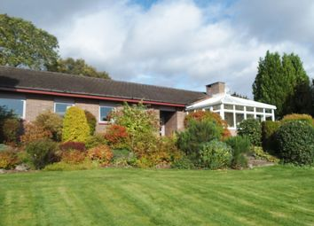 Thumbnail 5 bedroom detached house for sale in Kirkton Road, Rattray, Blairgowrie, Perthshire