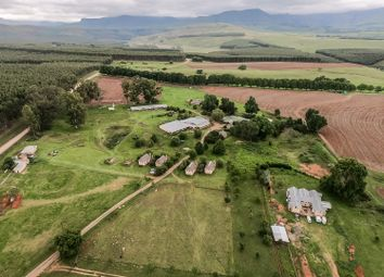 Thumbnail 25 bed country house for sale in Champagne Valley, Kwazulu-Natal, South Africa