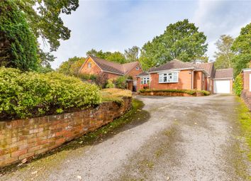 Thumbnail 4 bed detached bungalow for sale in Harts Leap Road, Sandhurst, Berkshire