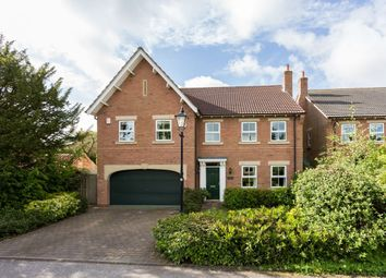 Thumbnail 6 bed detached house for sale in Old Coppice, Haxby, York