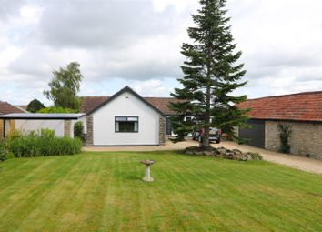 Thumbnail 4 bed detached bungalow for sale in Manor Road, Saltford, Bristol