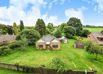 Thumbnail 3 bed detached bungalow for sale in Medstead, Alton, Hampshire