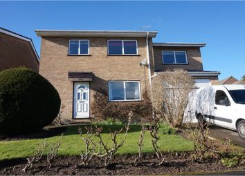 Thumbnail 4 bed detached house for sale in Everard Avenue, Sheffield