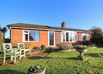 Thumbnail 3 bed detached bungalow for sale in The Street, Shotesham All Saints, Norwich, Norfolk