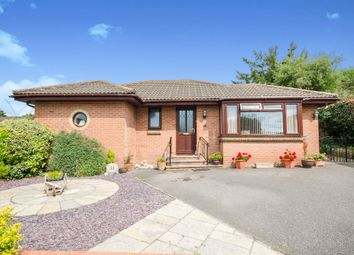 Thumbnail 3 bed detached bungalow for sale in South Mead, Bere Regis, Wareham