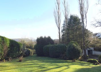 Thumbnail Land for sale in Couchill Lane, Seaton