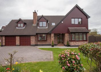 Thumbnail 5 bedroom detached house for sale in 36, Beechwood Grove, Belfast