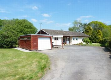Thumbnail 3 bed detached bungalow for sale in West Anstey, South Molton