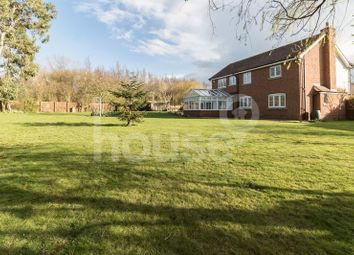 Thumbnail 4 bed detached house to rent in Court Tree Drive, Eastchurch, Sheerness