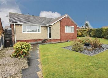 Thumbnail 4 bed bungalow for sale in Rayls Road, Todwick, Sheffield