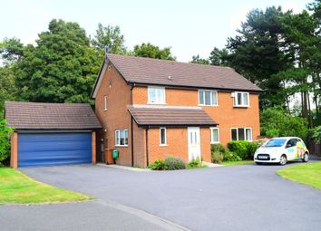 Thumbnail 4 bed property to rent in Squires Walk, Abington, Northampton