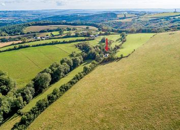 Whitestone, Exeter, Devon EX4. 3 bed detached house for sale
