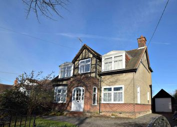 Thumbnail 4 bed property to rent in The Avenue, Witham, Essex