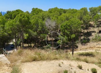 Thumbnail Land for sale in 07180, Paguera, Spain