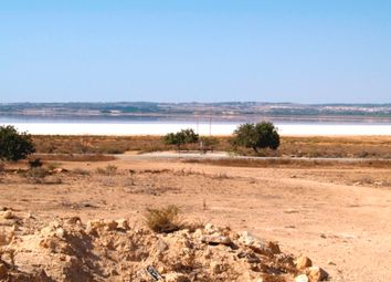 Thumbnail Land for sale in Albatera, Alicante, Spain