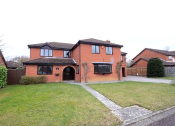 Thumbnail 5 bedroom detached house for sale in The Paddocks, Werrington, Peterborough