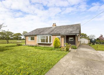 Thumbnail 2 bed bungalow to rent in Roots Lane, Catforth, Preston