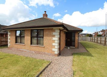 Thumbnail 3 bed bungalow for sale in Hillview Road, Carrickfergus