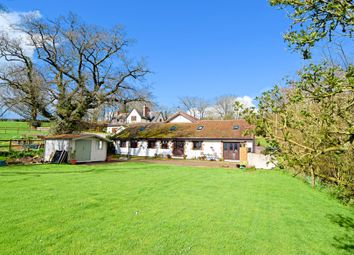 Thumbnail 4 bed barn conversion for sale in Appledore, Uffculme