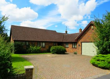 Thumbnail 4 bedroom bungalow to rent in Boundary Road, Hockwold, Thetford