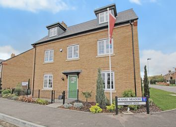 Thumbnail 5 bed detached house for sale in Hare Meadow, Great Barford, Bedford