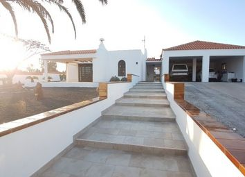 Thumbnail 4 bed villa for sale in Spain, Fuerteventura, La Oliva, Parque Holandés