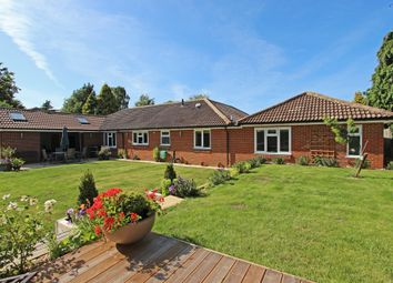 Thumbnail 4 bed detached bungalow for sale in Summerlay Close, Kingswood, Tadworth