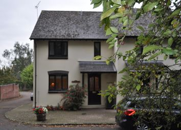 Thumbnail 3 bed semi-detached house to rent in The Green, Newnham-On-Severn, Glos