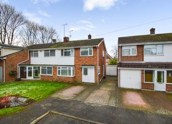 Thumbnail 3 bed semi-detached house for sale in Sible Hedingham, Halstead, Essex