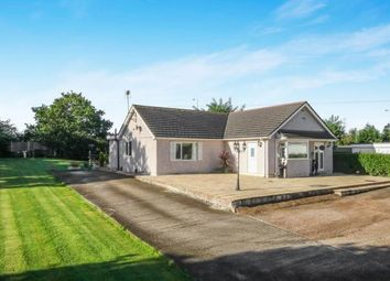 Thumbnail 4 bed bungalow for sale in Kelsterton, Flint