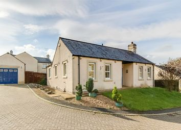 Thumbnail 2 bed detached bungalow for sale in 10 Rook Farm Close, Tallentire, Cockermouth