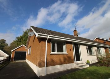 Thumbnail 3 bed bungalow for sale in Portmore Avenue, Ballinderry Upper, Lisburn