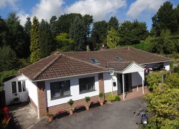 Church Road, Haslemere Quiet Location, Walk Of Town & Station GU27. 4 bed bungalow