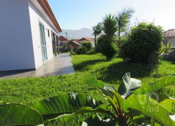 Thumbnail 5 bed detached house for sale in Estreito Da Calheta, Estreito Da Calheta, Calheta (Madeira)