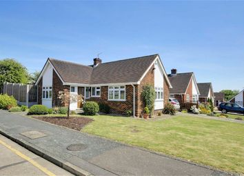 Thumbnail 4 bed detached bungalow for sale in The Orchards, Epping