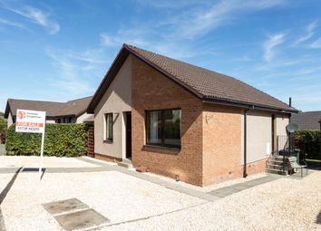 Thumbnail 3 bed bungalow for sale in Lady Nairne Drive, Perth
