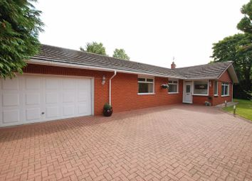 Thumbnail 4 bed detached bungalow for sale in Stonehaugh Way, Ponteland, Newcastle Upon Tyne