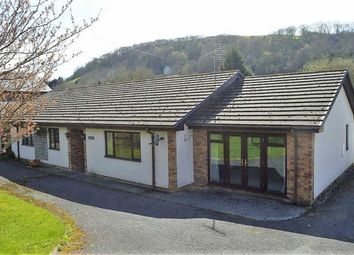 Thumbnail 3 bed detached bungalow for sale in Arlary, Llandre, Aberystwyth