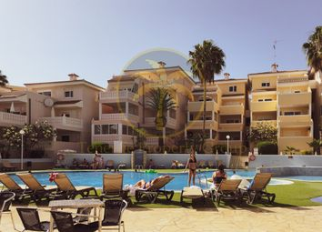 Thumbnail 1 bed apartment for sale in Chayofa, Canary Islands, 38660, Spain