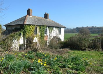 Thumbnail 3 bed detached house for sale in Frogmore Road, East Budleigh, Budleigh Salterton
