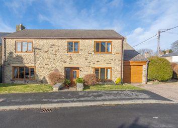 Thumbnail 4 bed detached house for sale in Hillcrest, Castleside, Consett