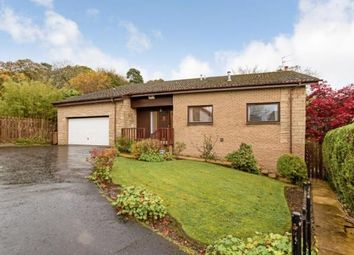 Thumbnail 4 bed detached house for sale in The Ness, Dollar, Clackmannanshire