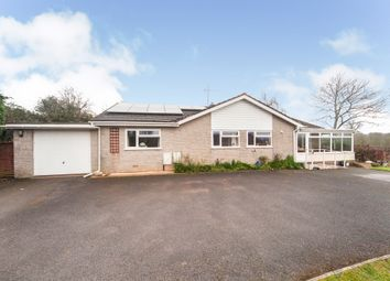 Thumbnail 3 bed detached bungalow for sale in Crosslands, Tonedale, Wellington