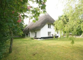 Thumbnail 5 bed cottage for sale in The Hollow, Shrewton, Salisbury