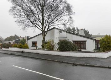 Thumbnail 3 bed detached bungalow for sale in The Drumlins, Ballynahinch, Down