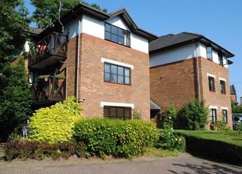 Thumbnail 2 bed flat to rent in Lower Village Road, Ascot, Sunninghill