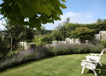 Thumbnail 3 bed detached house for sale in Court Road, Newton Ferrers, South Devon