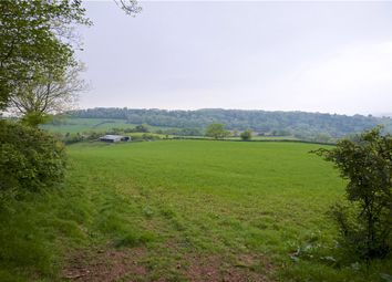 Thumbnail Land for sale in Thorverton, Exeter, Devon